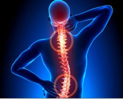 Back / Neck Pain